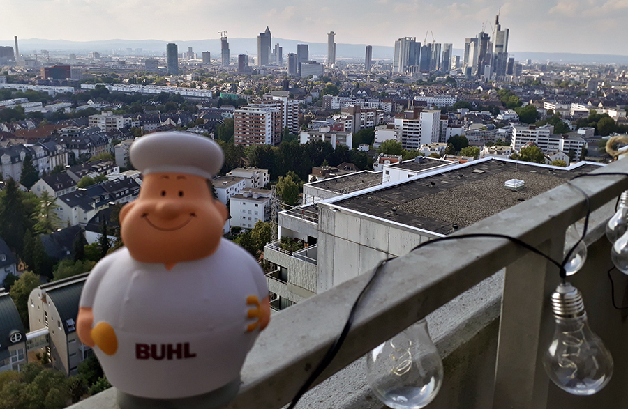 Bert vor der Frankfurter Skyline